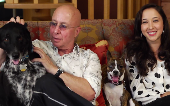 paul shaffer rescue dogs