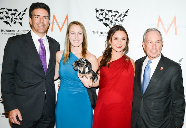 To the Rescue! New York HUMANE SOCIETY Gala