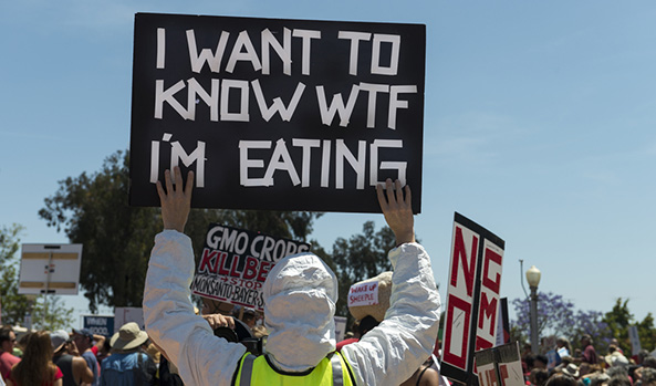 Big Food Lobbyists Want Federal Ban on GMO Labeling