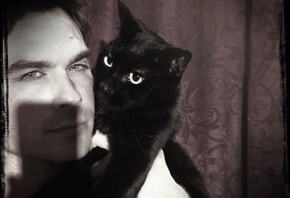Ian Somerhalder says black cats and dogs are often unadopted because of superstitions.