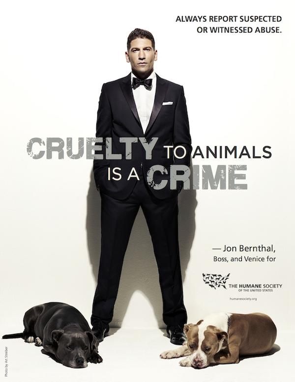Jon Bernthal pit bulls