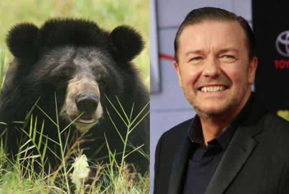 ricky gervais animals