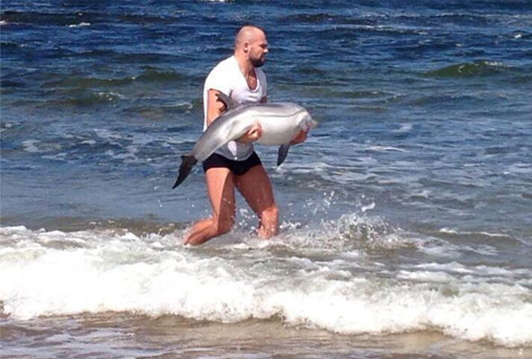Cathal Pendred rescues a baby dolphin in Ireland