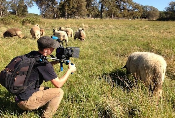 "Filmmaker Kip Andersen discusses how he came to make his debut doc ""Cowspiracy"" and shares details from filming, among other things."