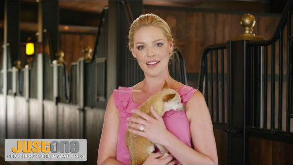 Katherine Heigl wants to achieve no kill nation