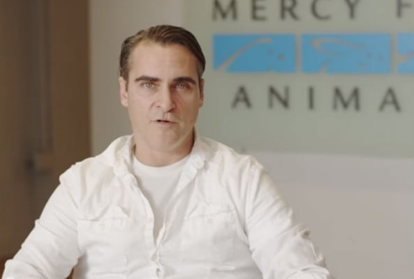 Actor Joaquin Phoenix is lending his star power to lash out against the cruelty pigs endure at a Walmart pork supplier.