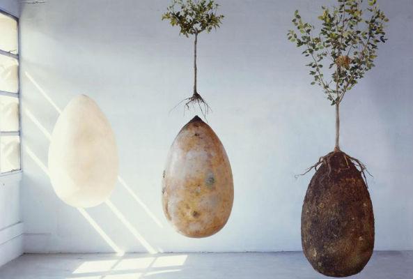 eco burial capsules