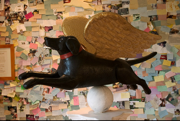 """The new radio documentary """"Dog Mountain: A Love Story,"""" follows the story of artists Stephen and Gwen Huneck and their dream of building a dog chapel."""