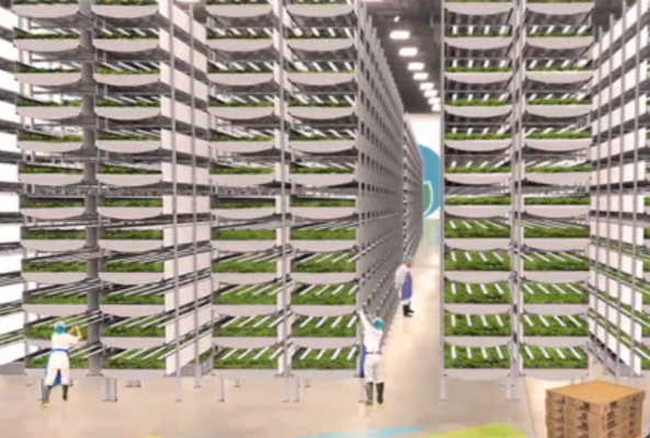vertical farm in newark Nj to produce over 2 million pounds of produce per year