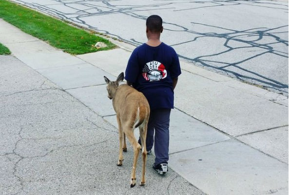 10 year old boy helps blind doe find food